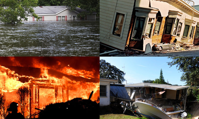 Home insurance covers damage from a volcano or wildfire—not a flood