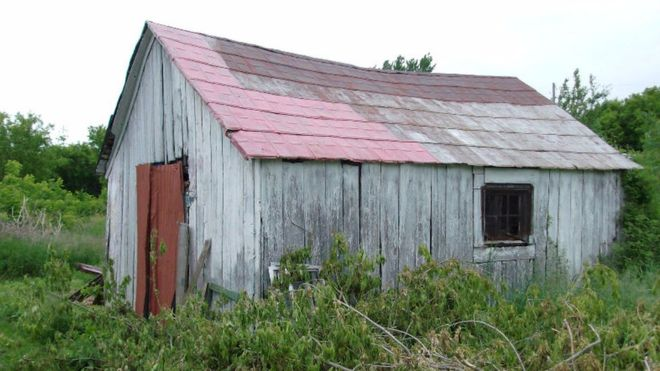 Canada farm that gave birth to the McIntosh apple up for sale