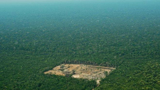 Is the Amazon facing new dangers?