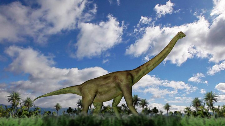 How a South African shepherd found a dinosaur graveyard