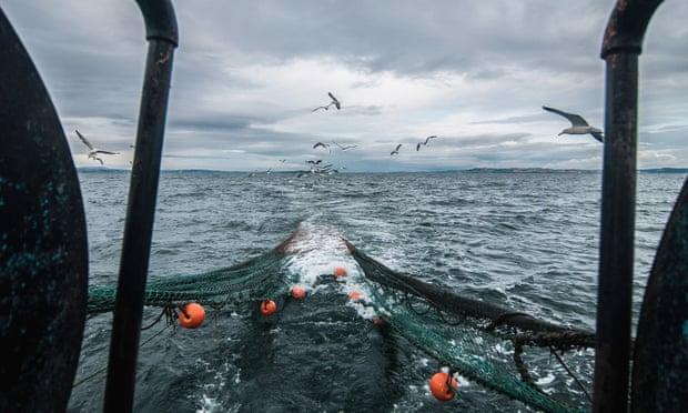 UN experts condemn Ireland's migrant fishing workers scheme