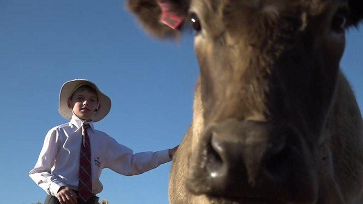 Australia's drought leading to 'suffering' of children, UN warns