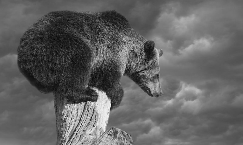 'Full-scale bear market' for stocks is among 3 scenarios Citi analysts predict amid trade tensions