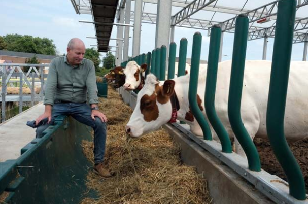 World food prices ease in June, dairy prices plunge