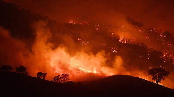 Australia fires: Employee brands News Corp coverage 'irresponsible'