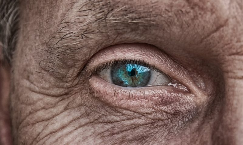 Reprogrammed skin cells restore sight in mouse models of retinal disease