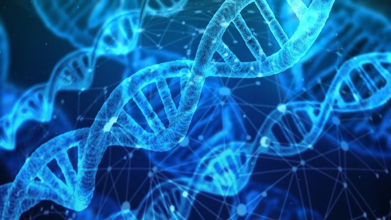 Dyno Therapeutics Announces Presentations at 2020 American Society of Gene and Cell Therapy Conference