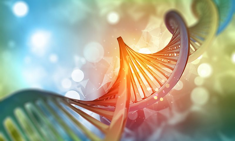 Doudna's team identifies new 'hypercompact' CRISPR enzyme