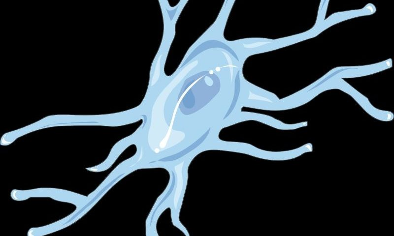 Tranquis debuts with $30M for immune cell approach to neurodegenerative diseases