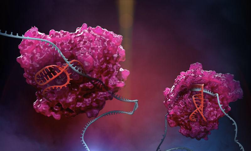 Korro Bio hits the high notes with $91.5M series A to run its OPERA RNA platform