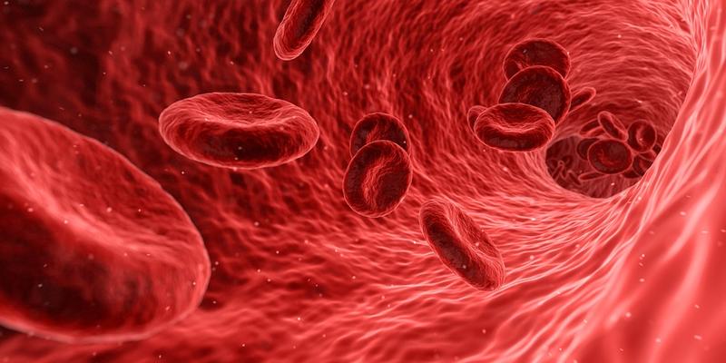Forma Therapeutics' IDH1 blocker banishes leukemia in 33% of patients