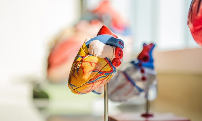 Amgen heart failure med, in 'unimpressive' showing, hits phase 3 goal—but doesn't extend patients' lives