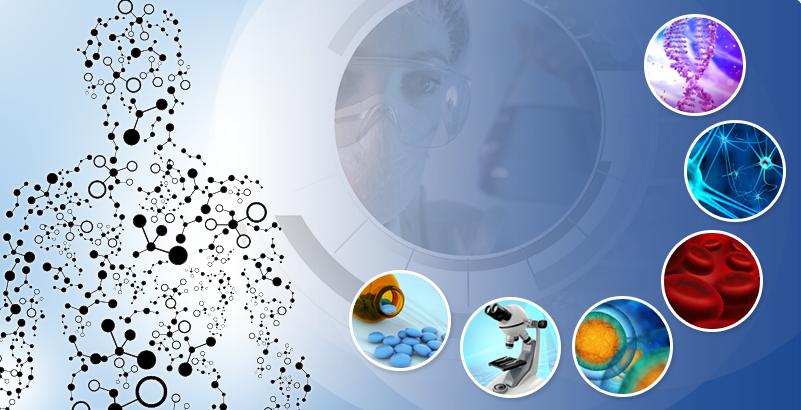 Enveric Biosciences Inc. Announces Closing of $10 Million Registered Direct Offering