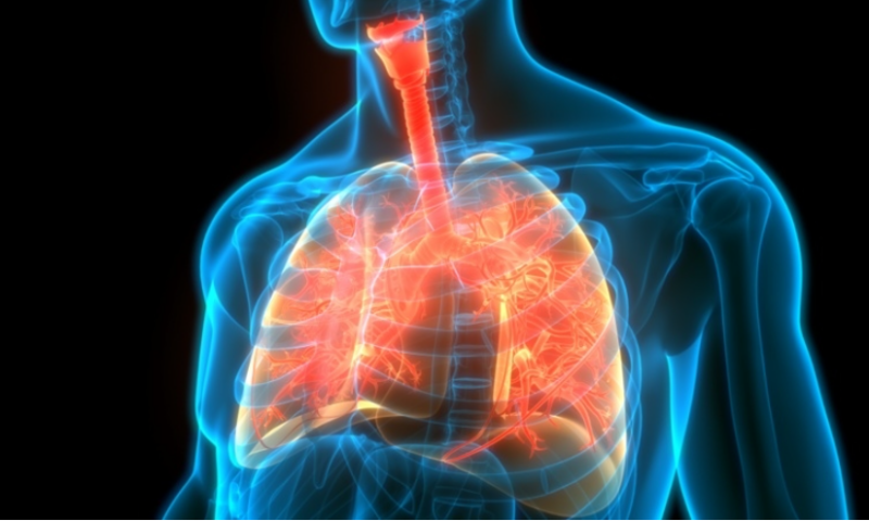 Breaking Big Pharma's AI barrier: Insilico Medicine uncovers novel target, new drug for pulmonary fibrosis in 18 months