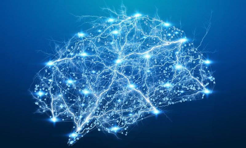 Is AI the key to unlocking the mysteries of Alzheimer's? Neuroimaging startup Imeka is betting on it