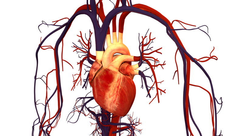 Abiomed acquires preCARDIA and its catheter-based system to treat heart failure