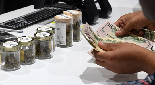 Cannabis stocks rally after Amazon endorses legalization