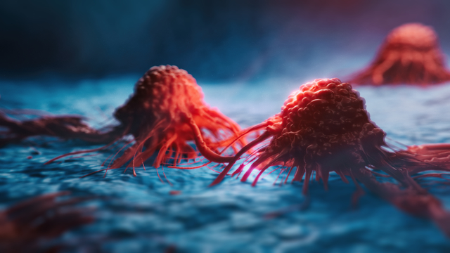 Turnstone Biologics rounds up $80M to fly cancer-killing virus, TIL treatment through the clinic