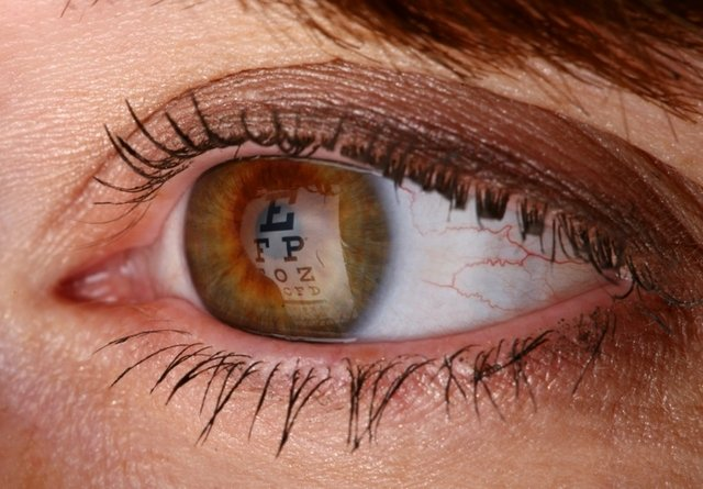 Coave raises $25M ahead of pivotal retinal gene therapy trial