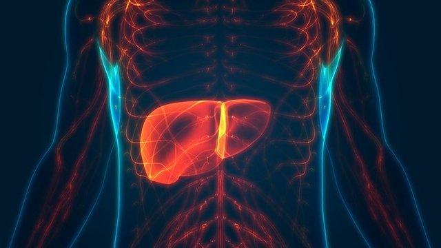 Dicerna's RNA-silencing drug curbs harmful protein in rare liver disease