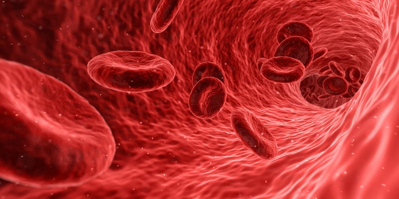 FDA puts Sigilon's hemophilia cell therapy trial on hold thanks to safety concerns
