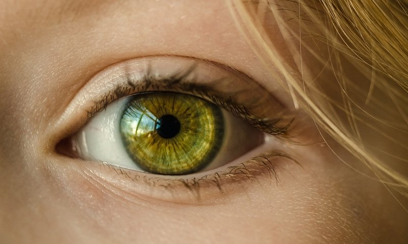 Surprise genetic discovery in macular degeneration points to new treatment strategy